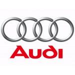 Фиксаторы ГРМ Audi